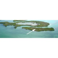 Cayo Theana Private Island Belize
