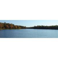 Gillfillan Lake S Properties Private Island Nova Scotia