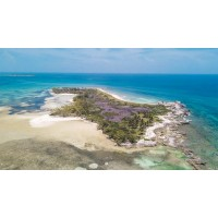 Hawk's Nest Cay Private Island Bahamas