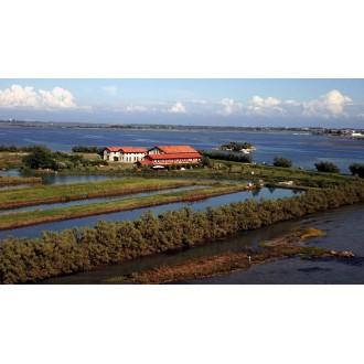 Продажа острова Isola Ravaiarina Private Island Italy