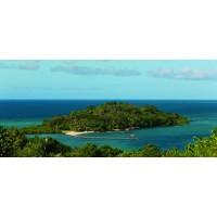 Dolphin Private Island Fiji