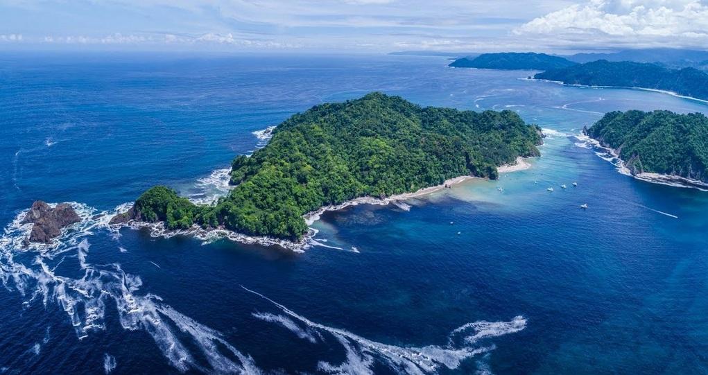 частный остров Исла Тортуга, Чили